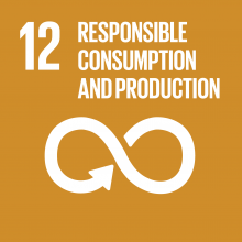 Development Goal - Responsible Consumption and Production