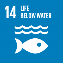 Development Goal - Life Below Water